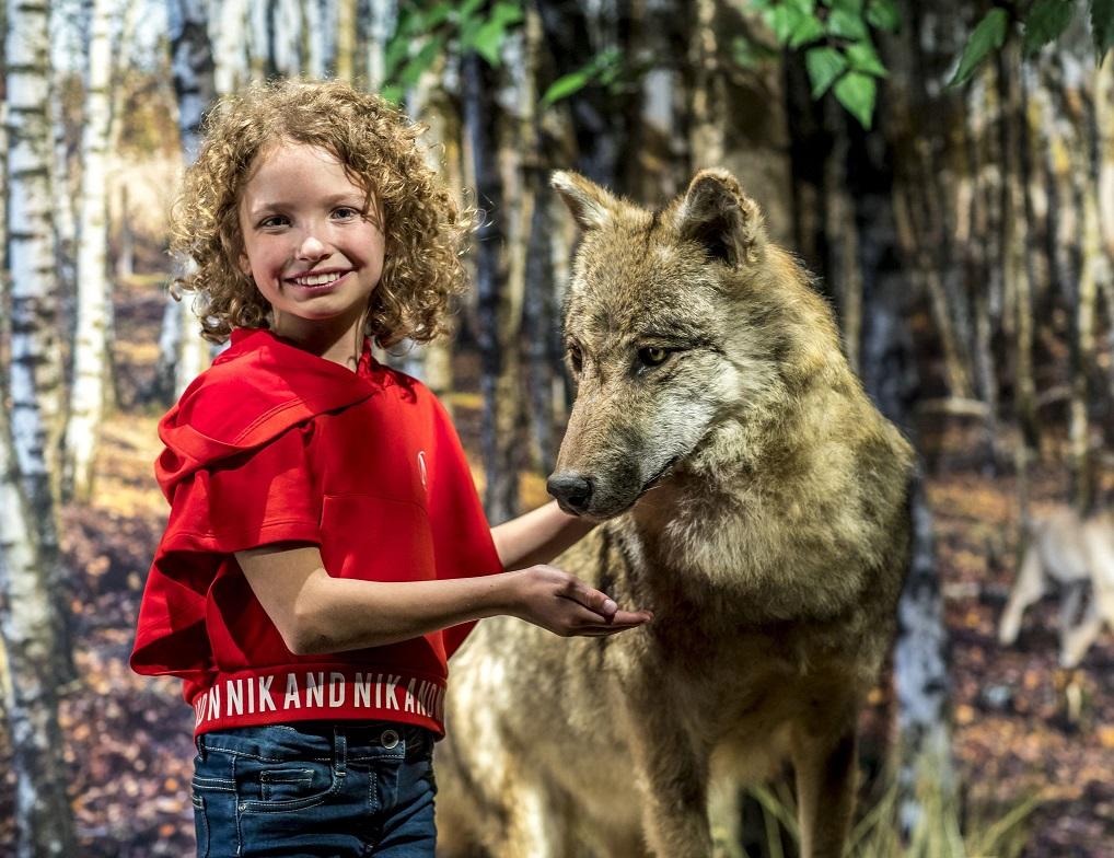 Wolf Museum Klok & Peel